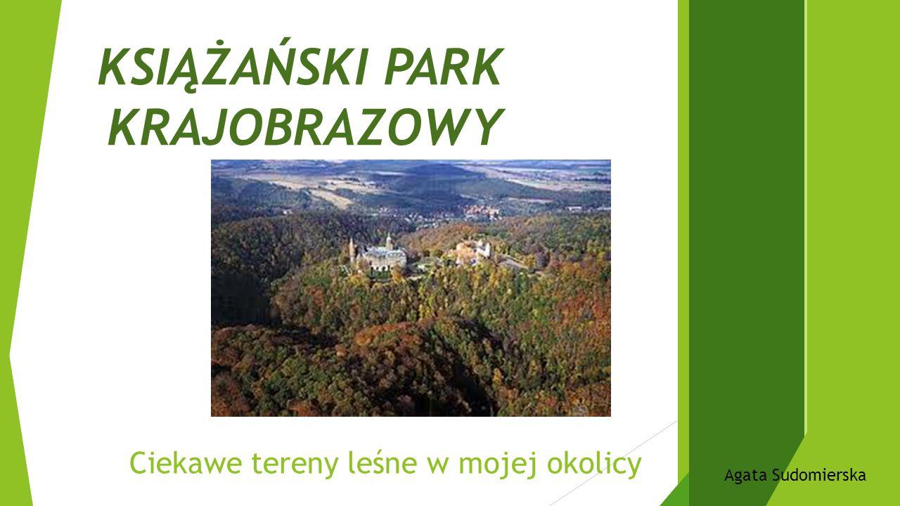 Ciekawe tereny leśne w mojej okolicy KSIĄŻAŃSKI PARK KRAJOBRAZOWY Agata Sudomierska