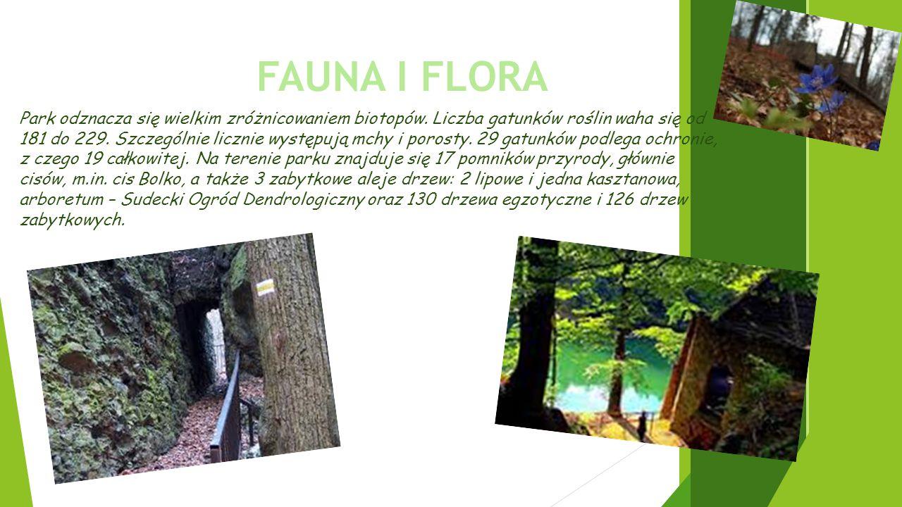 FAUNA I FLORA Park odznacza się wielkim zróżnicowaniem biotopów. Liczba gatunków roślin waha się od 181 do 229. Szczególnie licznie występują mchy i p
