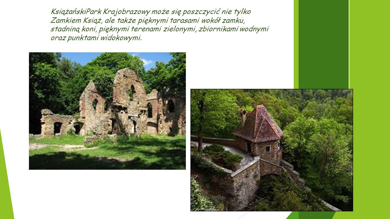 KsiążańskiPark Krajobrazowy może się poszczycić nie tylko Zamkiem Książ, ale także pięknymi tarasami wokół zamku, stadniną koni, pięknymi terenami zie
