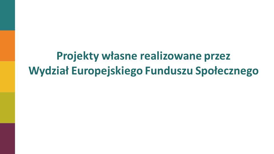 Projekty własne realizowane przez Wydział Europejskiego Funduszu Społecznego