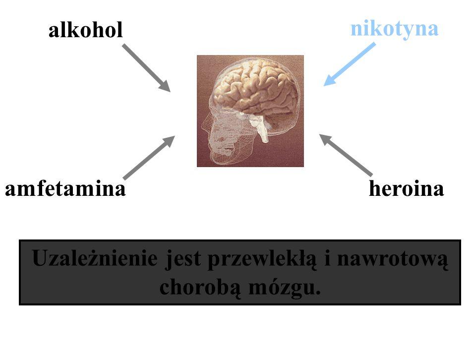 Uzależnienie jest przewlekłą i nawrotową chorobą mózgu. amfetamina nikotyna alkohol heroina