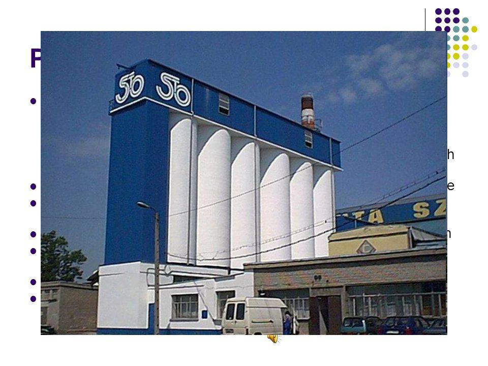 Przemysł Częstochowa jest głównym ośrodkiem Częstochowskiego Okręgu Przemysłowego, trzeciego co do wielkości w województwie śląskim. Od średniowiecza