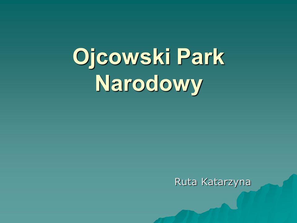 Ojcowski Park Narodowy Ruta Katarzyna