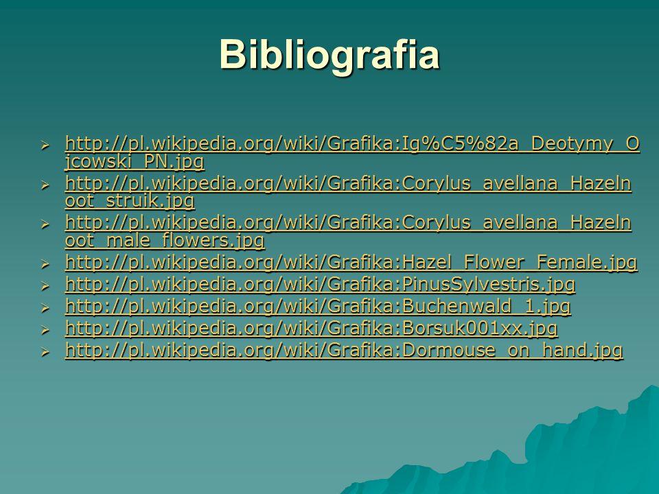 Bibliografia  http://pl.wikipedia.org/wiki/Grafika:Ig%C5%82a_Deotymy_O jcowski_PN.jpg http://pl.wikipedia.org/wiki/Grafika:Ig%C5%82a_Deotymy_O jcowski_PN.jpg http://pl.wikipedia.org/wiki/Grafika:Ig%C5%82a_Deotymy_O jcowski_PN.jpg  http://pl.wikipedia.org/wiki/Grafika:Corylus_avellana_Hazeln oot_struik.jpg http://pl.wikipedia.org/wiki/Grafika:Corylus_avellana_Hazeln oot_struik.jpg http://pl.wikipedia.org/wiki/Grafika:Corylus_avellana_Hazeln oot_struik.jpg  http://pl.wikipedia.org/wiki/Grafika:Corylus_avellana_Hazeln oot_male_flowers.jpg http://pl.wikipedia.org/wiki/Grafika:Corylus_avellana_Hazeln oot_male_flowers.jpg http://pl.wikipedia.org/wiki/Grafika:Corylus_avellana_Hazeln oot_male_flowers.jpg  http://pl.wikipedia.org/wiki/Grafika:Hazel_Flower_Female.jpg http://pl.wikipedia.org/wiki/Grafika:Hazel_Flower_Female.jpg  http://pl.wikipedia.org/wiki/Grafika:PinusSylvestris.jpg http://pl.wikipedia.org/wiki/Grafika:PinusSylvestris.jpg  http://pl.wikipedia.org/wiki/Grafika:Buchenwald_1.jpg http://pl.wikipedia.org/wiki/Grafika:Buchenwald_1.jpg  http://pl.wikipedia.org/wiki/Grafika:Borsuk001xx.jpg http://pl.wikipedia.org/wiki/Grafika:Borsuk001xx.jpg  http://pl.wikipedia.org/wiki/Grafika:Dormouse_on_hand.jpg http://pl.wikipedia.org/wiki/Grafika:Dormouse_on_hand.jpg