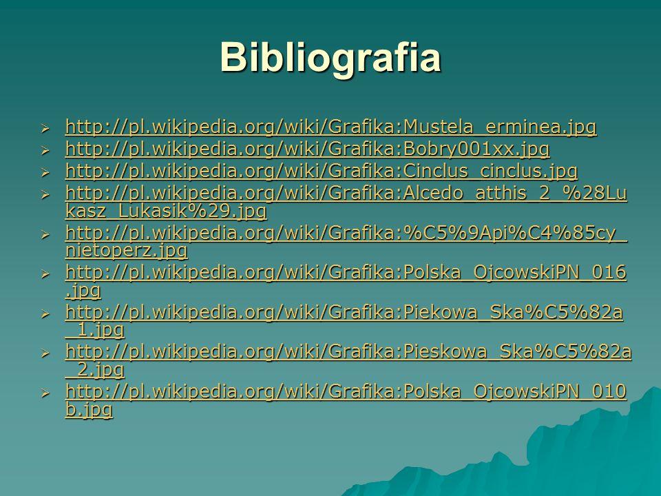Bibliografia  http://pl.wikipedia.org/wiki/Grafika:Mustela_erminea.jpg http://pl.wikipedia.org/wiki/Grafika:Mustela_erminea.jpg  http://pl.wikipedia.org/wiki/Grafika:Bobry001xx.jpg http://pl.wikipedia.org/wiki/Grafika:Bobry001xx.jpg  http://pl.wikipedia.org/wiki/Grafika:Cinclus_cinclus.jpg http://pl.wikipedia.org/wiki/Grafika:Cinclus_cinclus.jpg  http://pl.wikipedia.org/wiki/Grafika:Alcedo_atthis_2_%28Lu kasz_Lukasik%29.jpg http://pl.wikipedia.org/wiki/Grafika:Alcedo_atthis_2_%28Lu kasz_Lukasik%29.jpg http://pl.wikipedia.org/wiki/Grafika:Alcedo_atthis_2_%28Lu kasz_Lukasik%29.jpg  http://pl.wikipedia.org/wiki/Grafika:%C5%9Api%C4%85cy_ nietoperz.jpg http://pl.wikipedia.org/wiki/Grafika:%C5%9Api%C4%85cy_ nietoperz.jpg http://pl.wikipedia.org/wiki/Grafika:%C5%9Api%C4%85cy_ nietoperz.jpg  http://pl.wikipedia.org/wiki/Grafika:Polska_OjcowskiPN_016.jpg http://pl.wikipedia.org/wiki/Grafika:Polska_OjcowskiPN_016.jpg http://pl.wikipedia.org/wiki/Grafika:Polska_OjcowskiPN_016.jpg  http://pl.wikipedia.org/wiki/Grafika:Piekowa_Ska%C5%82a _1.jpg http://pl.wikipedia.org/wiki/Grafika:Piekowa_Ska%C5%82a _1.jpg http://pl.wikipedia.org/wiki/Grafika:Piekowa_Ska%C5%82a _1.jpg  http://pl.wikipedia.org/wiki/Grafika:Pieskowa_Ska%C5%82a _2.jpg http://pl.wikipedia.org/wiki/Grafika:Pieskowa_Ska%C5%82a _2.jpg http://pl.wikipedia.org/wiki/Grafika:Pieskowa_Ska%C5%82a _2.jpg  http://pl.wikipedia.org/wiki/Grafika:Polska_OjcowskiPN_010 b.jpg http://pl.wikipedia.org/wiki/Grafika:Polska_OjcowskiPN_010 b.jpg http://pl.wikipedia.org/wiki/Grafika:Polska_OjcowskiPN_010 b.jpg