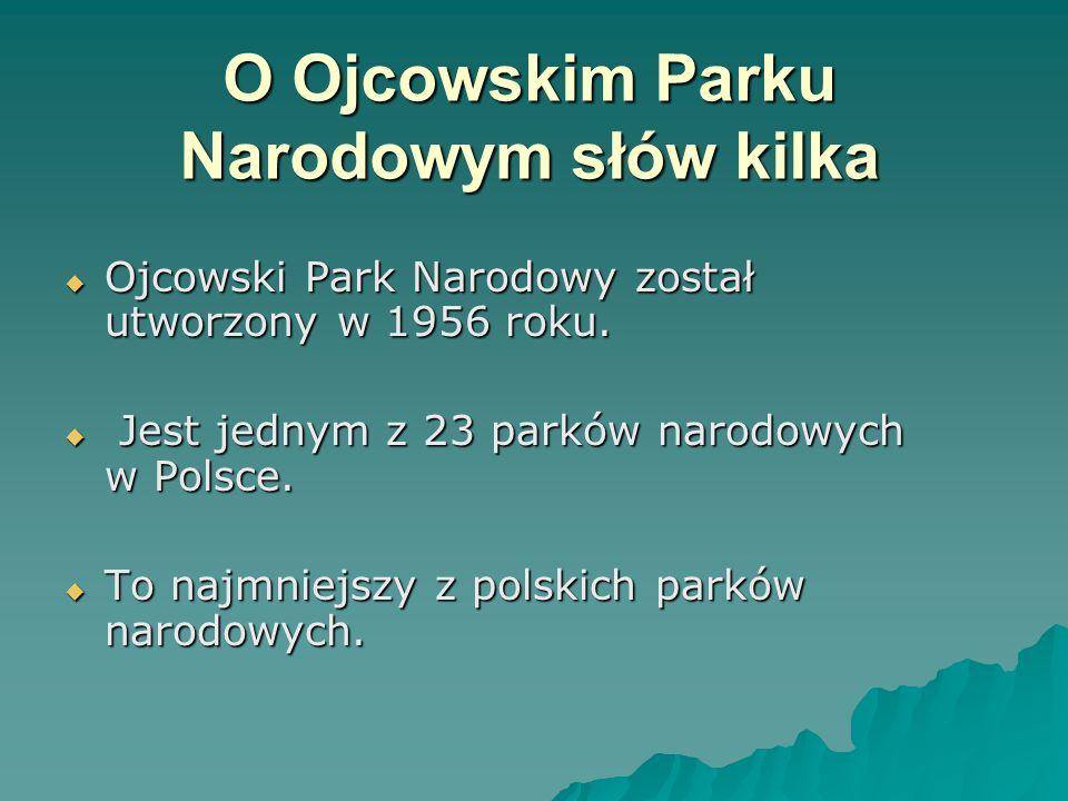 O Ojcowskim Parku Narodowym słów kilka  Ojcowski Park Narodowy został utworzony w 1956 roku.