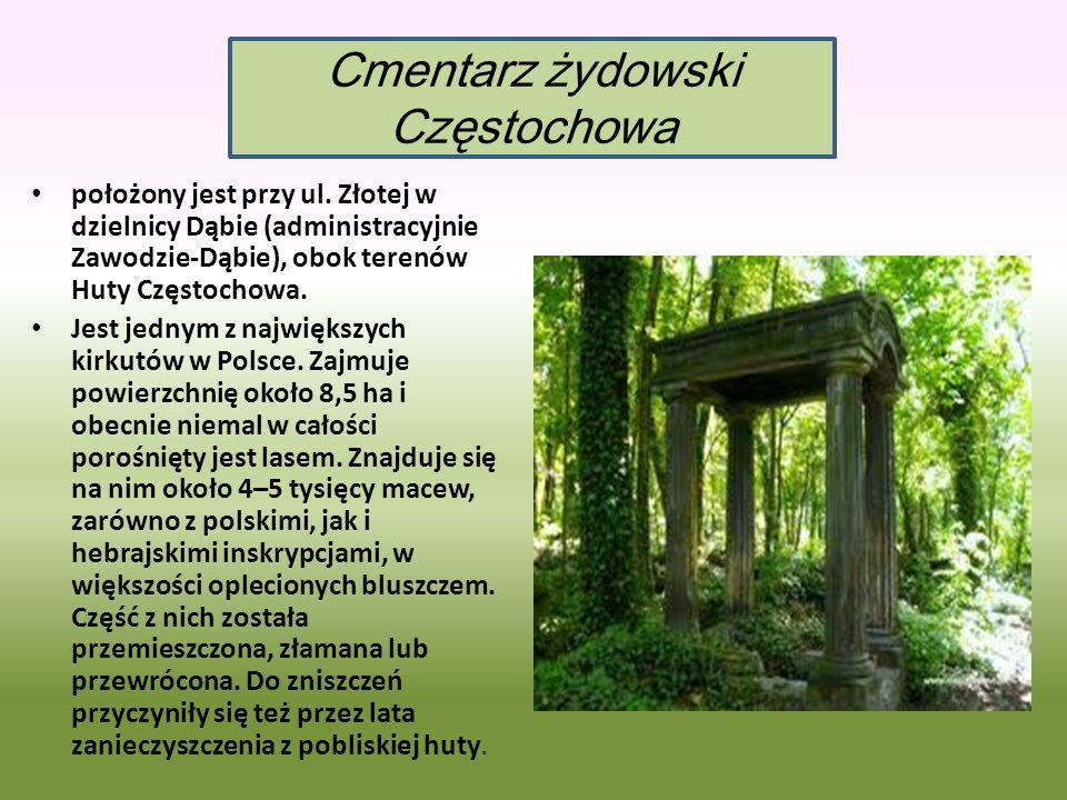 położony jest przy ul. Złotej w dzielnicy Dąbie (administracyjnie Zawodzie-Dąbie), obok terenów Huty Częstochowa. Jest jednym z największych kirkutów