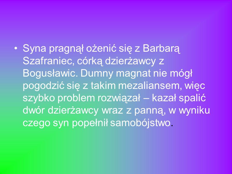 Syna pragnął ożenić się z Barbarą Szafraniec, córką dzierżawcy z Bogusławic. Dumny magnat nie mógł pogodzić się z takim mezaliansem, więc szybko probl