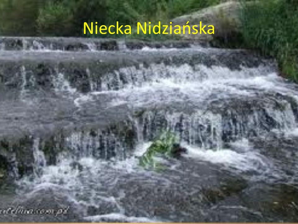 Wyżyna Kielecko-Sandomierska