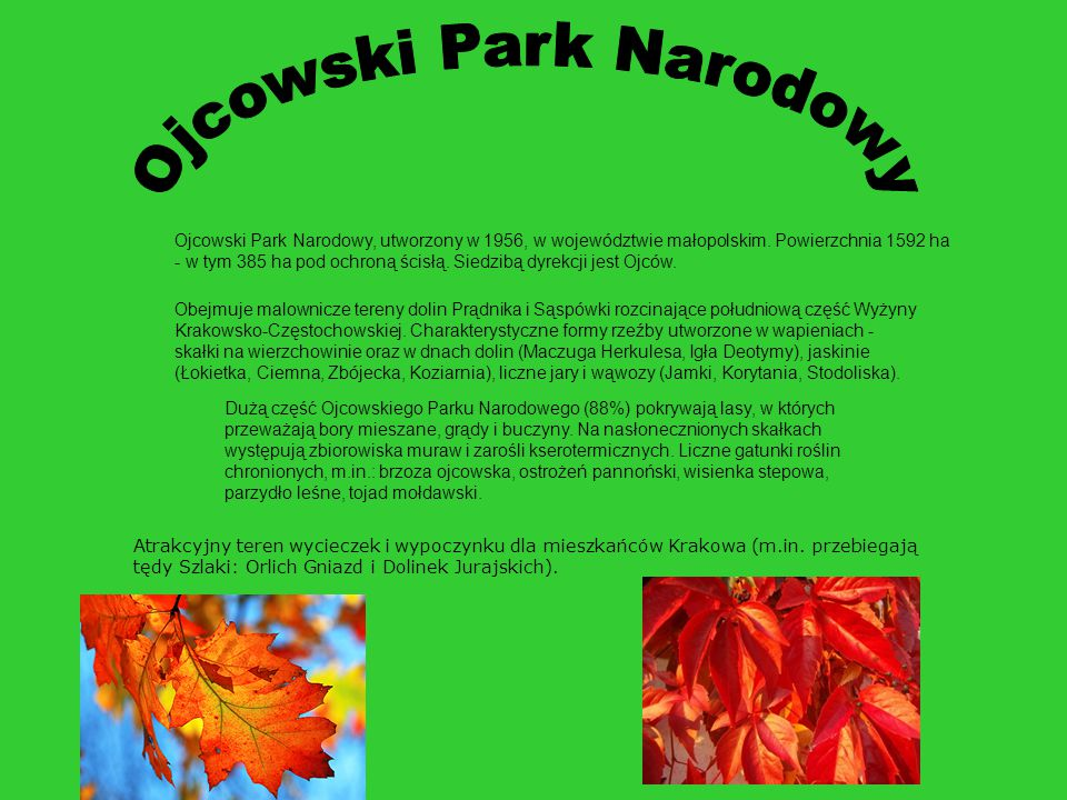 Ojcowski Park Narodowy, utworzony w 1956, w województwie małopolskim. Powierzchnia 1592 ha - w tym 385 ha pod ochroną ścisłą. Siedzibą dyrekcji jest O