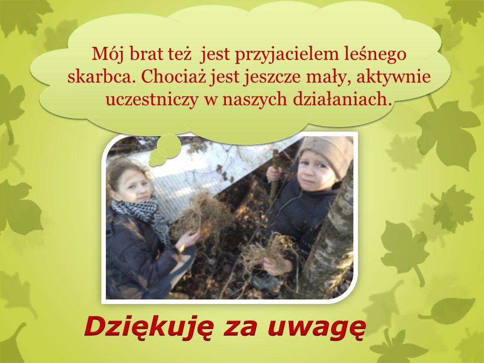 Mój brat też jest przyjacielem leśnego skarbca. Chociaż jest jeszcze mały, aktywnie uczestniczy w naszych działaniach.