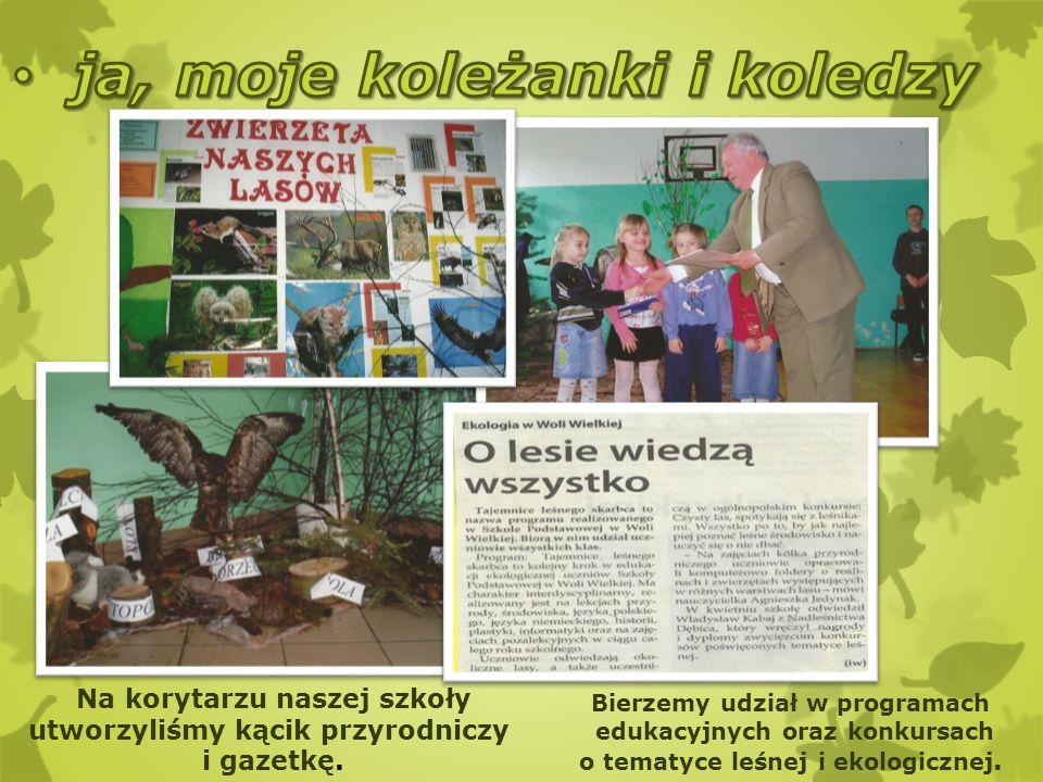 Na korytarzu naszej szkoły utworzyliśmy kącik przyrodniczy i gazetkę. Bierzemy udział w programach edukacyjnych oraz konkursach o tematyce leśnej i ek