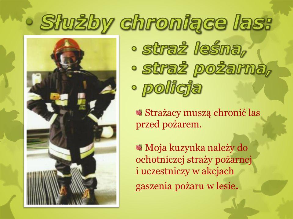 Strażacy muszą chronić las przed pożarem. Moja kuzynka należy do ochotniczej straży pożarnej i uczestniczy w akcjach gaszenia pożaru w lesie.