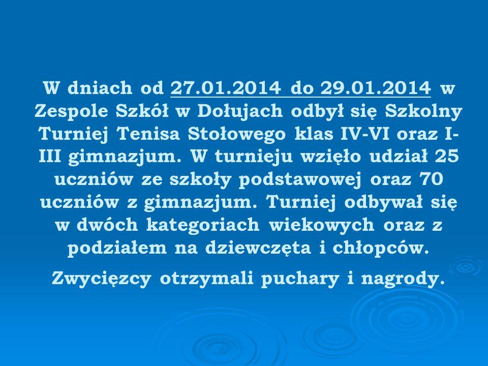 W dniu 12.02.2014 drużyna Zespołu Szkół w Dołujach wzięła udział w Młodzieżowym Turnieju Tenisa Stołowego o Puchar Wójta Gminy Dobra, który odbył się w Publicznej Szkole Podstawowej w Mierzynie.