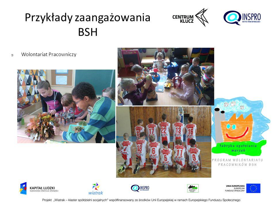  Wolontariat Pracowniczy Przykłady zaangażowania BSH