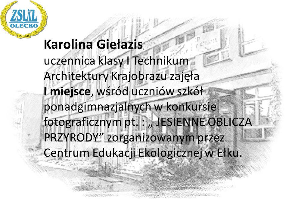 Karolina Giełazis, uczennica klasy I Technikum Architektury Krajobrazu zajęła I miejsce, wśród uczniów szkół ponadgimnazjalnych w konkursie fotografic