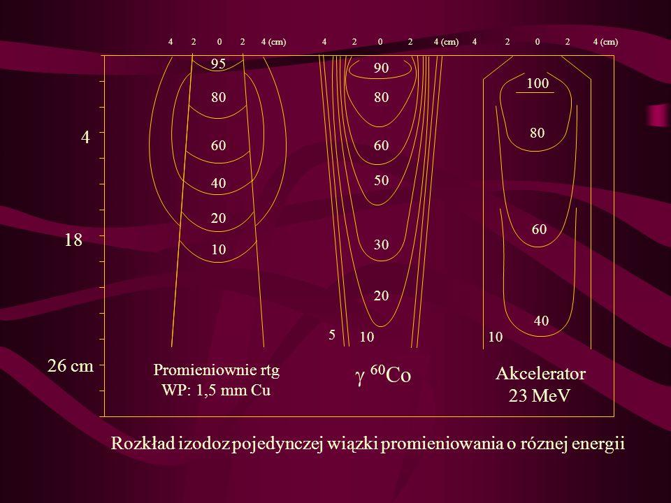 4 2 0 2 4 (cm) 4 26 cm 18 Rozkład izodoz pojedynczej wiązki promieniowania o róznej energii Promieniownie rtg WP: 1,5 mm Cu  60 Co Akcelerator 23 MeV