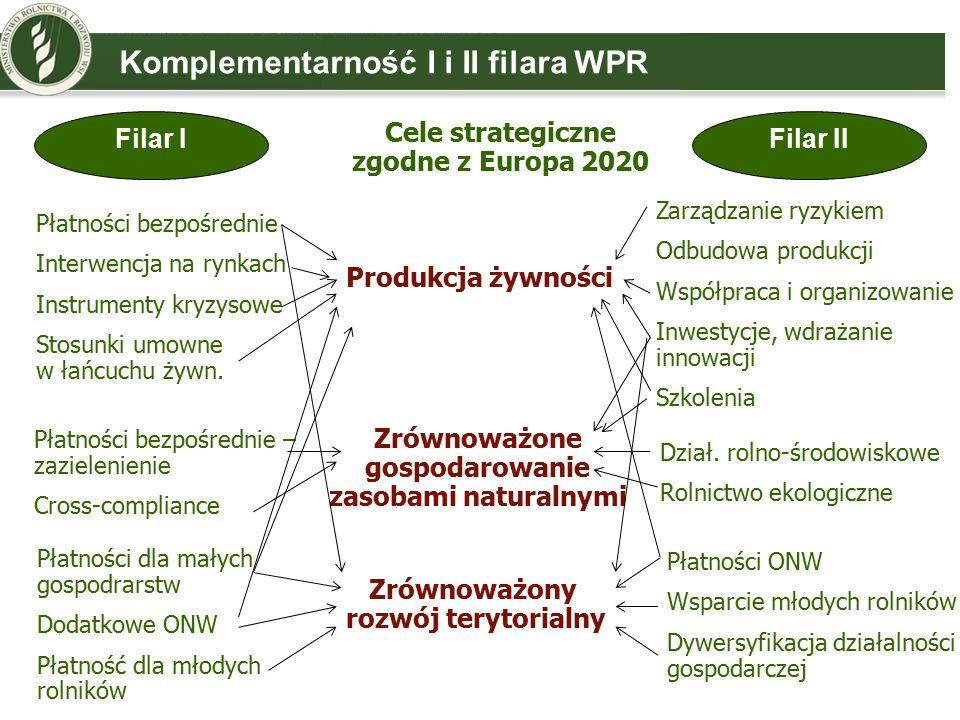 Komplementarność I i II filara WPR Filar IFilar II Cele strategiczne zgodne z Europa 2020 Produkcja żywności Zrównoważone gospodarowanie zasobami naturalnymi Zrównoważony rozwój terytorialny Płatności bezpośrednie Interwencja na rynkach Instrumenty kryzysowe Stosunki umowne w łańcuchu żywn.