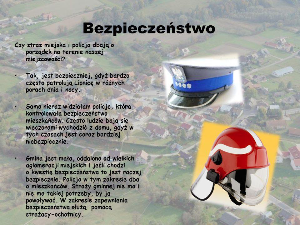 Bezpieczeństwo Czy straż miejska i policja dbają o porządek na terenie naszej miejscowości.