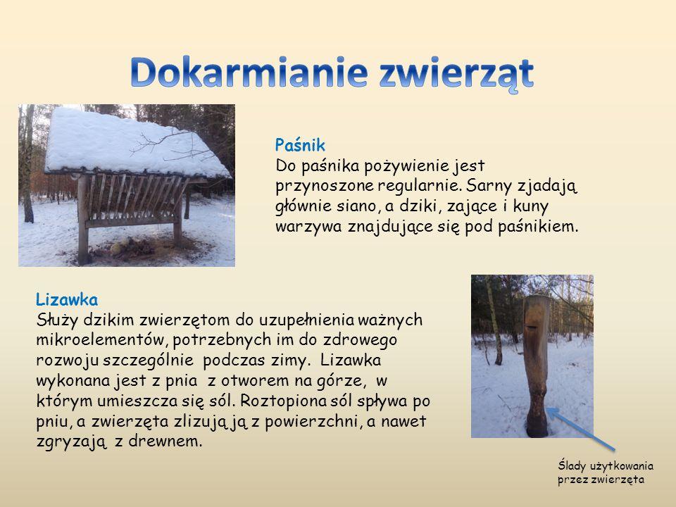 Lizawka Służy dzikim zwierzętom do uzupełnienia ważnych mikroelementów, potrzebnych im do zdrowego rozwoju szczególnie podczas zimy. Lizawka wykonana