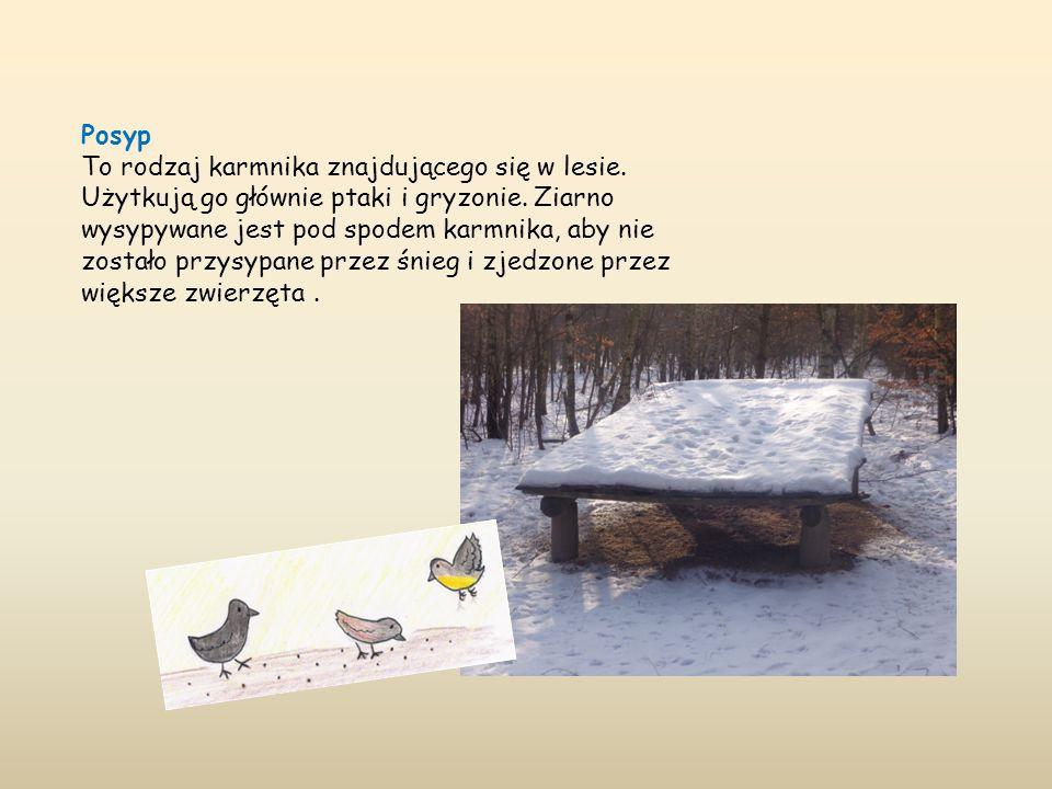 Posyp To rodzaj karmnika znajdującego się w lesie. Użytkują go głównie ptaki i gryzonie. Ziarno wysypywane jest pod spodem karmnika, aby nie zostało p