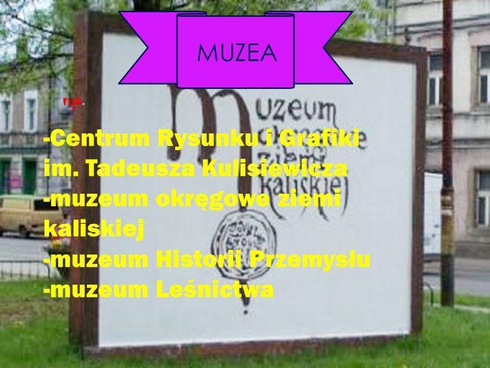 MUZEA -Centrum Rysunku i Grafiki im. Tadeusza Kulisiewicza -muzeum okręgowe ziemi kaliskiej -muzeum Historii Przemysłu -muzeum Leśnictwa np.