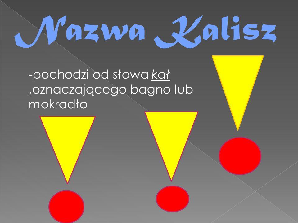 Nazwa Kalisz -pochodzi od słowa kał,oznaczającego bagno lub mokradło