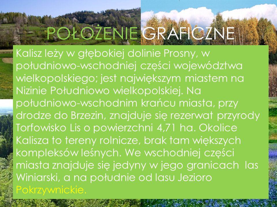 POŁOŻENIE GRAFICZNE Kalisz leży w głębokiej dolinie Prosny, w południowo-wschodniej części województwa wielkopolskiego; jest największym miastem na Ni