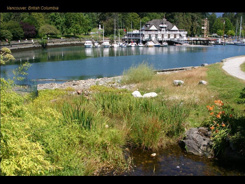 Vancouver – miasto w zachodniej Kanadzie, w prowincji Kolumbia Brytyjska, przy ujściu rzeki Fraser do Pacyfiku. Stacja końcowa transkontynentalnej Kol