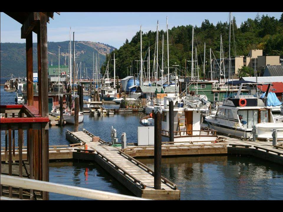 """Domy na """"wodzie"""" Vancouver Island"""
