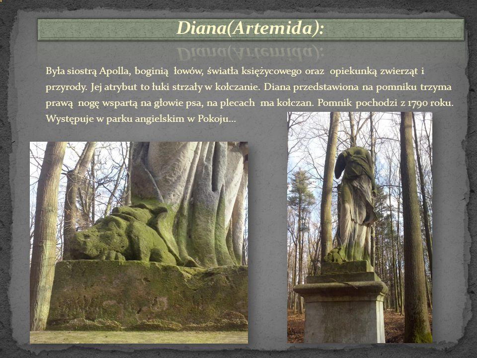 Niedaleko pomnika,,Śpiącego Lwa'' znajduje się najstarsza w Polsce sosna wejmutka.