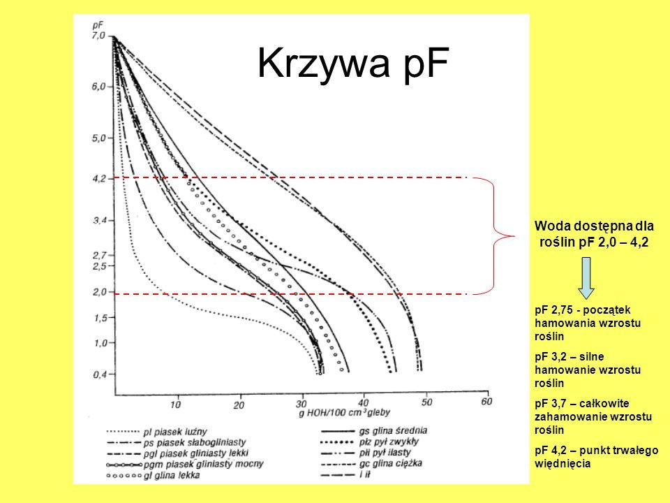 Woda dostępna dla roślin pF 2,0 – 4,2 pF 2,75 - początek hamowania wzrostu roślin pF 3,2 – silne hamowanie wzrostu roślin pF 3,7 – całkowite zahamowan