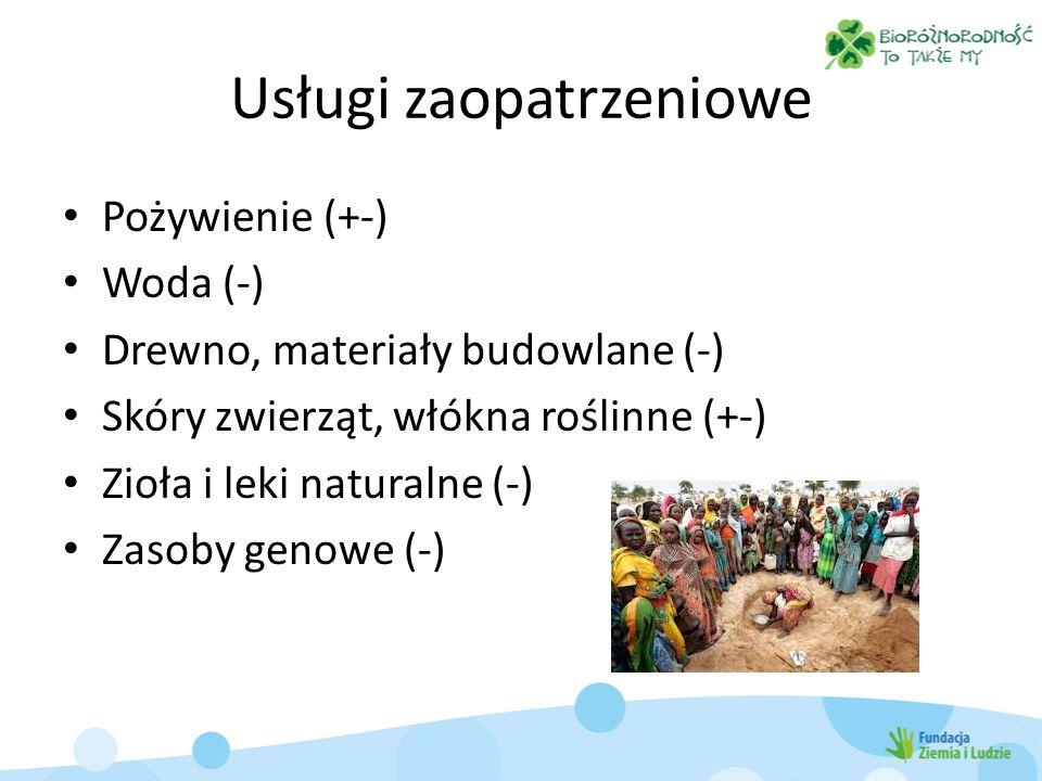 Usługi zaopatrzeniowe Pożywienie (+-) Woda (-) Drewno, materiały budowlane (-) Skóry zwierząt, włókna roślinne (+-) Zioła i leki naturalne (-) Zasoby
