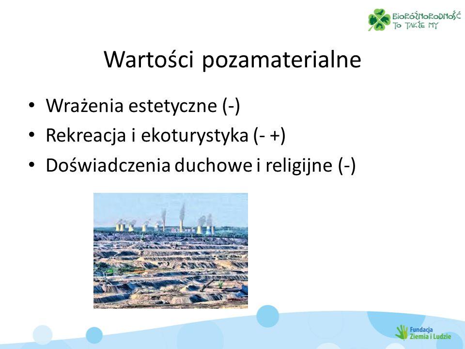 Wartości pozamaterialne Wrażenia estetyczne (-) Rekreacja i ekoturystyka (- +) Doświadczenia duchowe i religijne (-)