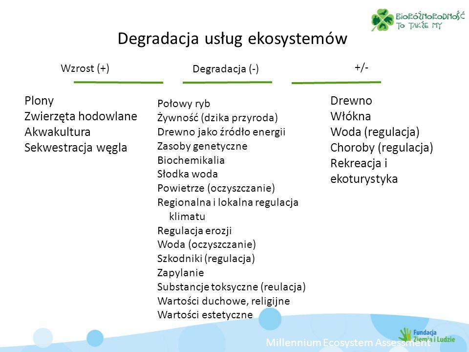Plony Zwierzęta hodowlane Akwakultura Sekwestracja węgla Połowy ryb Żywność (dzika przyroda) Drewno jako źródło energii Zasoby genetyczne Biochemikali