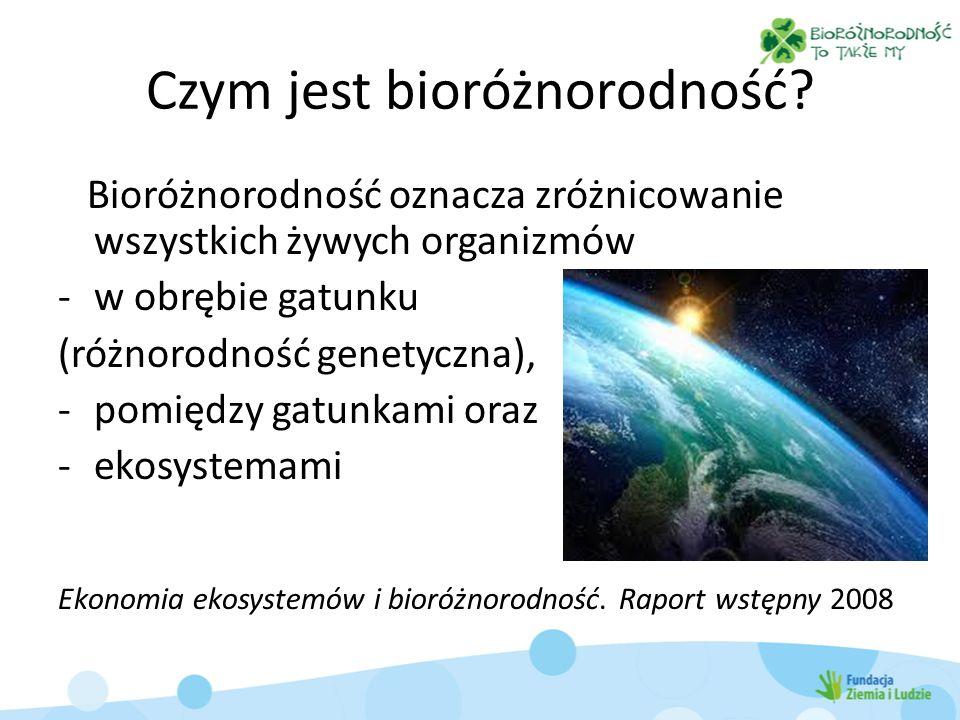 Czym jest bioróżnorodność? Bioróżnorodność oznacza zróżnicowanie wszystkich żywych organizmów -w obrębie gatunku (różnorodność genetyczna), -pomiędzy