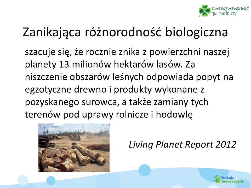 Zanikająca różnorodność biologiczna szacuje się, że rocznie znika z powierzchni naszej planety 13 milionów hektarów lasów.