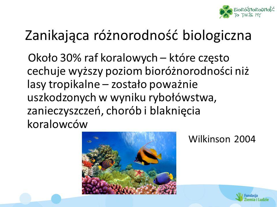 Zanikająca różnorodność biologiczna W środowisku morskim populacja ryb zmniejszyła się o 90% od kiedy rozpoczęto połowy na skalę przemysłową Millennium Ecosystem Assessment 2005