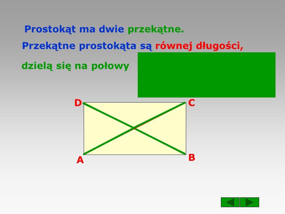 A B CD Prostokąt ma dwie przekątne.