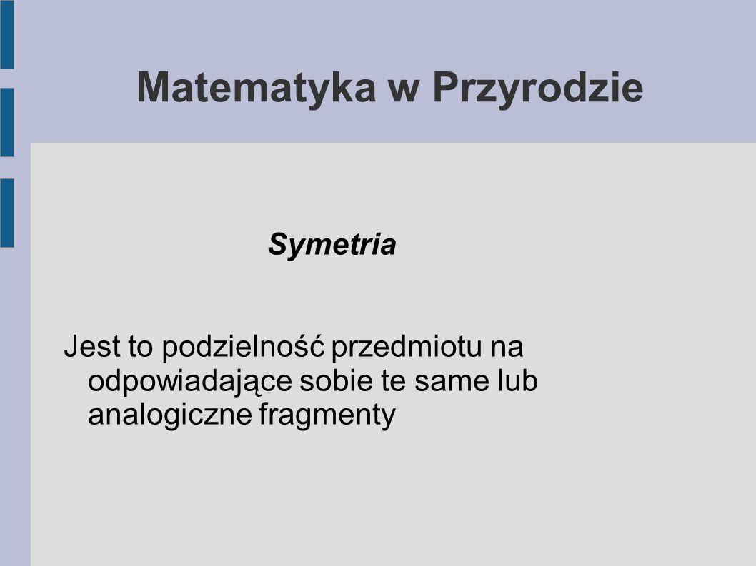 Matematyka w Przyrodzie - Symetria