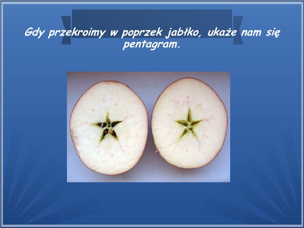 Gdy przekroimy w poprzek jabłko, ukaże nam się pentagram.