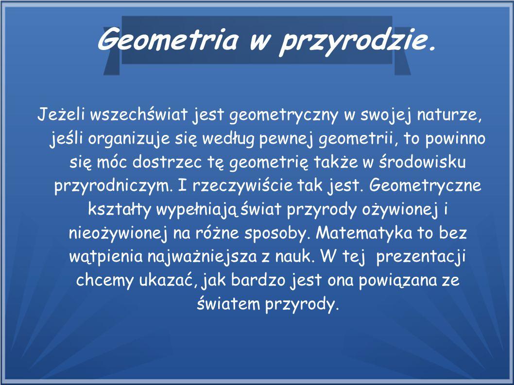 Jeżeli wszechświat jest geometryczny w swojej naturze, jeśli organizuje się według pewnej geometrii, to powinno się móc dostrzec tę geometrię także w