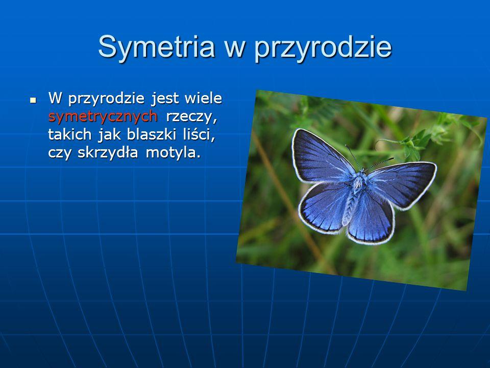 Symetria w przyrodzie W przyrodzie jest wiele symetrycznych rzeczy, takich jak blaszki liści, czy skrzydła motyla. W przyrodzie jest wiele symetryczny