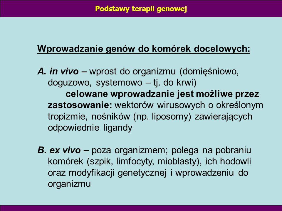 Ogólna zasada postępowania przy modyfikacjach genetycznych – cd.