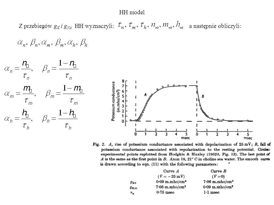 Z przebiegów g K i g Na HH wyznaczyli: a następnie obliczyli: HH model