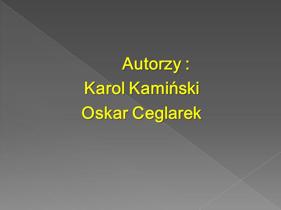 Autorzy : Karol Kamiński Oskar Ceglarek