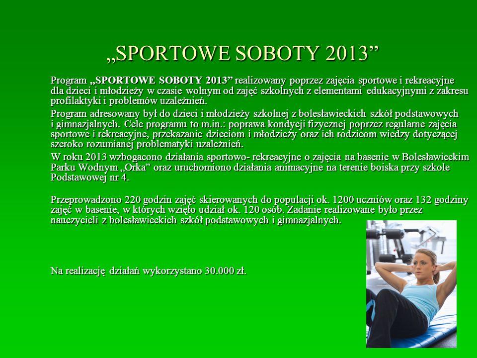 """""""SPORTOWE SOBOTY 2013"""" Program """"SPORTOWE SOBOTY 2013"""" realizowany poprzez zajęcia sportowe i rekreacyjne dla dzieci i młodzieży w czasie wolnym od zaj"""