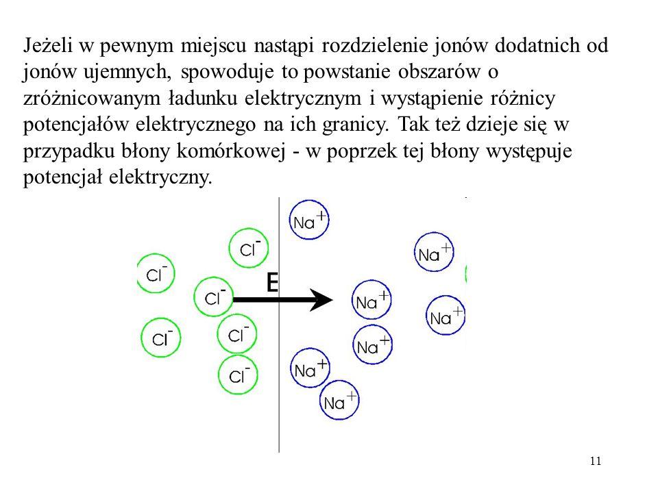 11 Jeżeli w pewnym miejscu nastąpi rozdzielenie jonów dodatnich od jonów ujemnych, spowoduje to powstanie obszarów o zróżnicowanym ładunku elektryczny