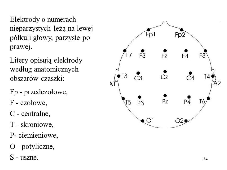 34 Elektrody o numerach nieparzystych leżą na lewej półkuli głowy, parzyste po prawej. Litery opisują elektrody według anatomicznych obszarów czaszki: