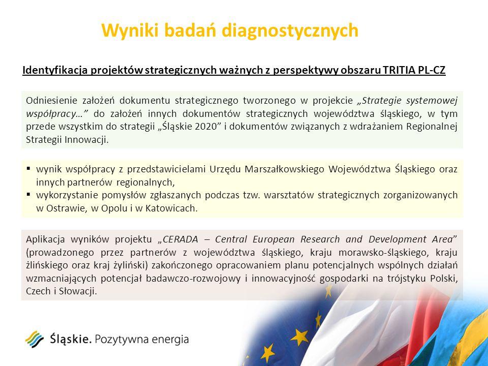 Identyfikacja projektów strategicznych ważnych z perspektywy obszaru TRITIA PL-CZ Wyniki badań diagnostycznych  wynik współpracy z przedstawicielami